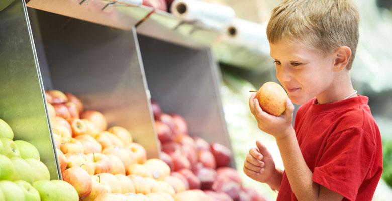 Servicios Nutricionales a Colectivos Escolares