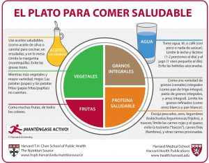 Plato comer saludable Harvard